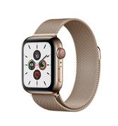 Apple Watch 5 - 40mm Gold Stainless Steel/Gold Milanese Loop (GPS+Cellular)